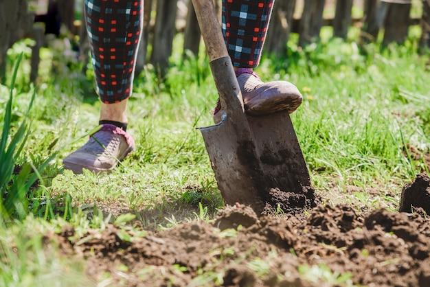 Una donna anziana scava la terra con una pala nel suo giardino in paese