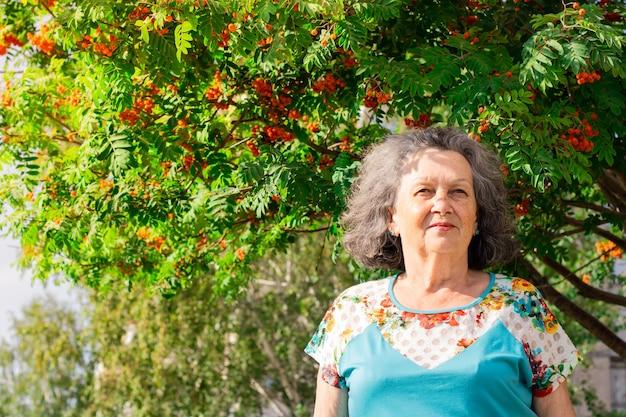 Una donna anziana si erge sullo sfondo di frutti di bacche di sorbo sotto i raggi del sole su un caldo. una donna caucasica matura con i capelli grigi ricci sta vicino a un albero e guarda in lontananza