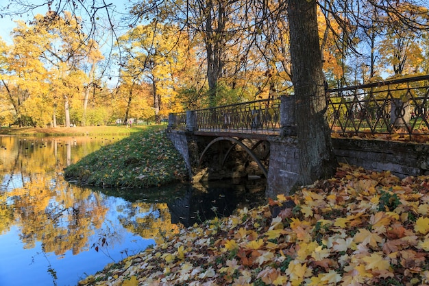 Elegante ponte nel luminoso parco autunnale di tsarskoe selo