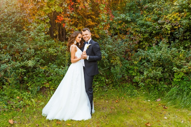Elegante sposa riccia e sposo elegante che si abbracciano su un bellissimo sfondo verde