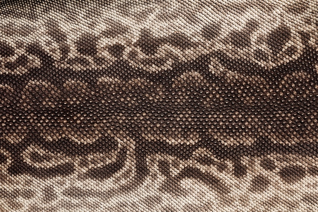 Trama di pelle di serpente tronco elefante