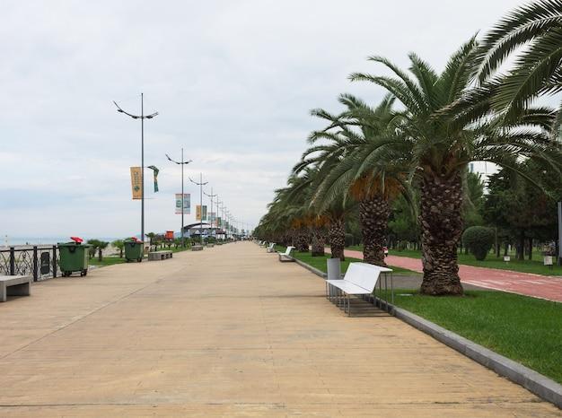 L'argine della città di batumi con palme verdi nel parco balneare di batumi. scenario naturale