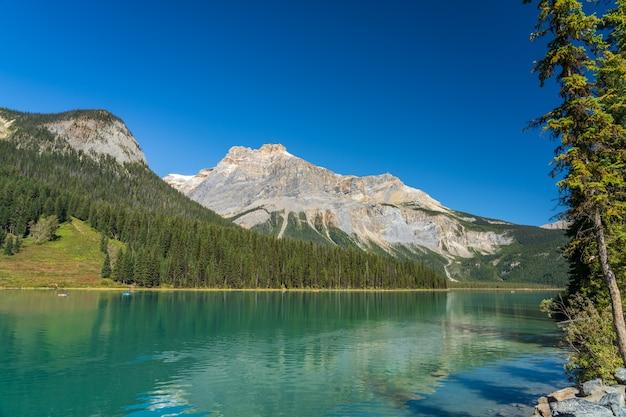 Lago color smeraldo in estate con foreste frondose e montagne tutt'intorno