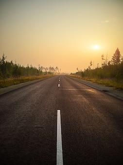 Strada asfaltata vuota, traccia nella foresta all'alba