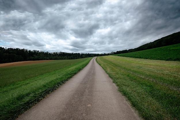 Una strada di campagna vuota attraverso i campi verdi in una nuvolosa giornata estiva. sullo sfondo la foresta. nubi di tempesta grigie.