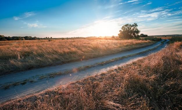 Strada di campagna vuota attraverso campi con erba secca e alberi verdi