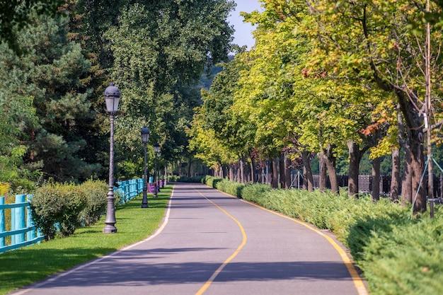 Strada curva vuota, lampioni, staccionata in legno e alberi verdi. kiev, ucraina