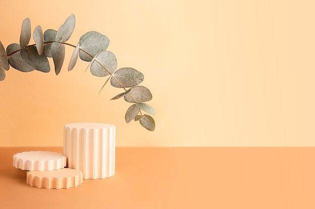 Podi geometrici vuoti sullo sfondo pastello isometrico. ramo di eucalipto fresco dall'alto come arco. buono come mockup per mostrare cosmetici o prodotti, grande banner.