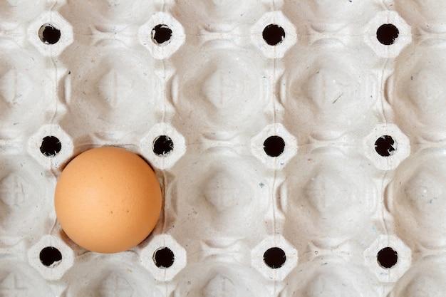 Vassoio carta vuoto con un uovo di gallina marrone
