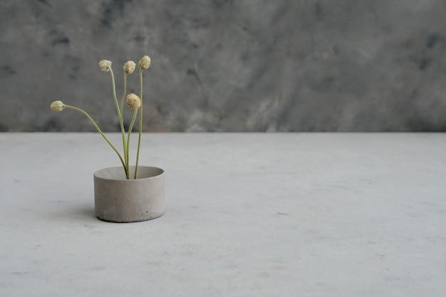 Piedistallo vuoto o podio in cemento con esposizione di prodotti con fiori minimalisti secchi e foglie naturali su sfondo verde. modello. copia spazio