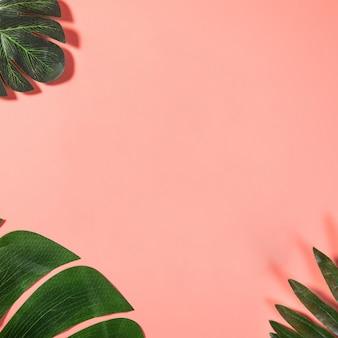 Spazio vuoto della copia rosa con foglie tropicali
