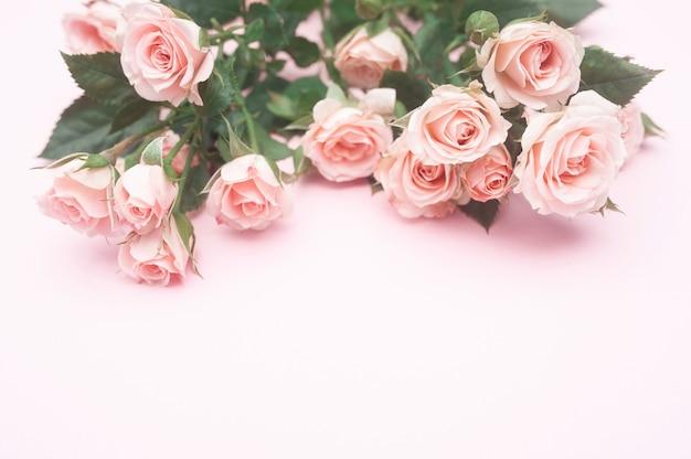 Foglio di carta rosa vuoto e boccioli di rose rosa