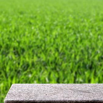 Tavolo di pietra vuoto in giardino all'aperto erba natura luce solare piazza display background