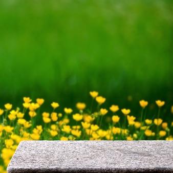 Tavolo di pietra vuoto nel giardino all'aperto fiori gialli natura luce solare piazza display sfondo