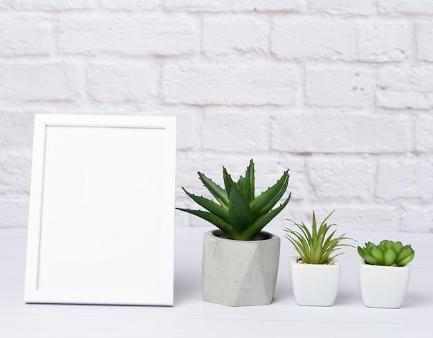 Cornice in legno bianca vuota e piante grasse verdi in un vaso di ceramica su uno sfondo di muro bianco, minimalismo all'interno