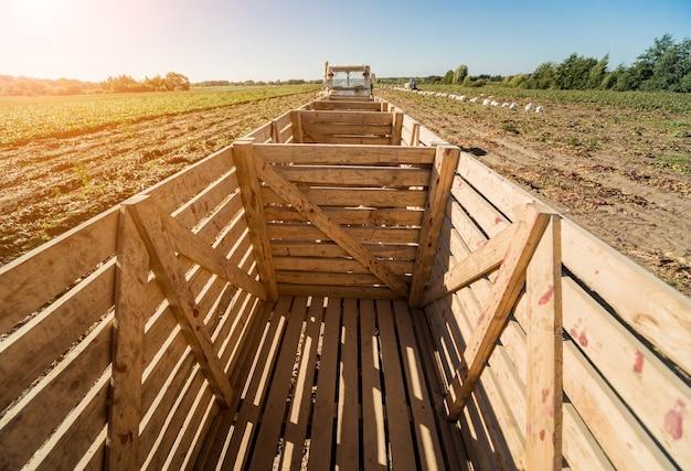 Rimorchio di woden vuoto al trattore sul campo di barbabietole.