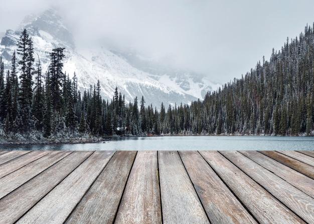 Plancia di legno vuota su nevoso sfocato sulla foresta di pini con montagne rocciose nel lago o'hara nel parco nazionale di yoho