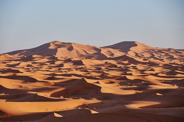 Le infinite sabbie del deserto del sahara. bel tramonto sulle dune di sabbia del deserto del sahara marocco africa