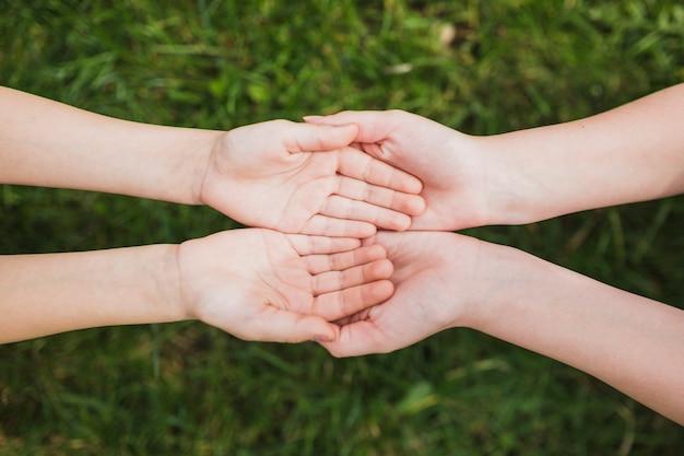 Ambiente e concetto di volontariato