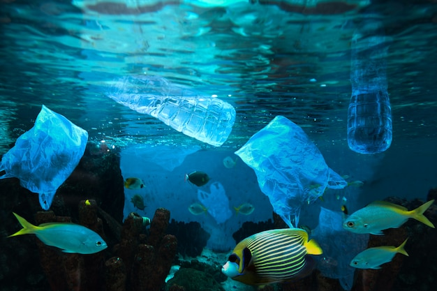 Inquinamento ambientale della bottiglia di acqua di plastica nell'oceano