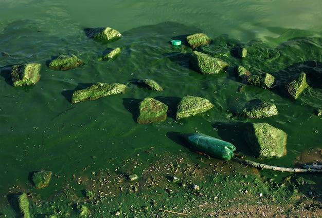 Problemi ambientali, acqua di fiume sporca con bottiglia di plastica galleggiante