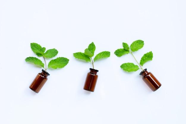 Bottiglia di olio essenziale con foglie di menta fresca su bianco