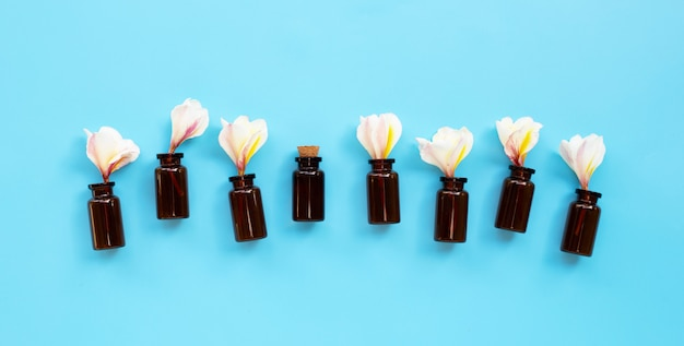 Olio essenziale con plumeria o fiore di frangipane su sfondo blu.