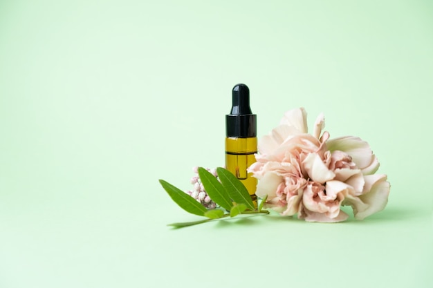 Oli essenziali, varie bottiglie con fiori di garofano e foglie verdi su sfondo verde. concetto di aromaterapia e profumi