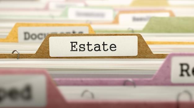 Cartella estate on business in multicolor card index. vista del primo piano. immagine sfocata. rendering 3d.