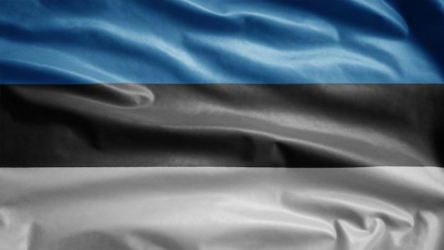 Bandiera estone che fluttua nel vento