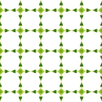 Motivo etnico dipinto a mano. design estivo boho chic moderno verde. stampa autentica pronta per tessuti, tessuto per costumi da bagno, carta da parati, involucro. reticolo etnico del confine di estate dell'acquerello.