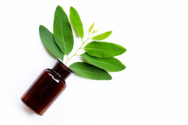 Foglie di eucalipto con bottiglia di medicina su bianco.