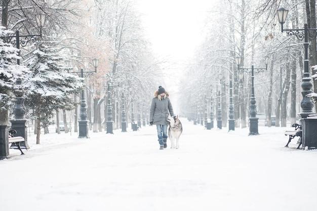 Donna europea che cammina con il giovane cane alaskan malamute nella città invernale