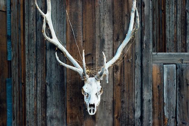 Cranio elegante diabolico di un cervo con una ghirlanda per halloween su fondo di legno.