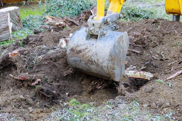 Escavatore che sradica alberi nella rimozione di terreni da alberi secolari, radici e rami con macchine a retroescavatore nel quartiere urbano.