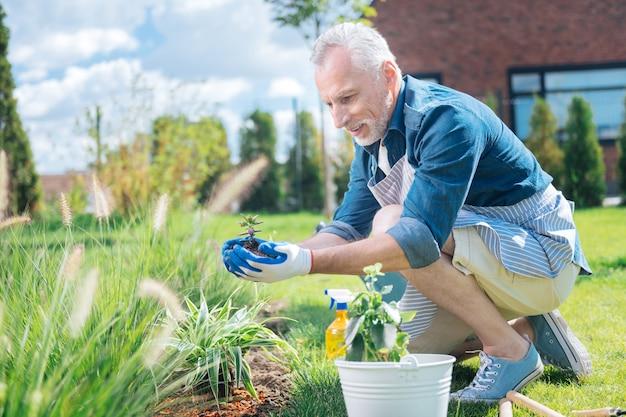 Uomo eccitato. un uomo maturo dai capelli grigi si sente estremamente eccitato e allegro mentre pianta il fiore per la prima volta