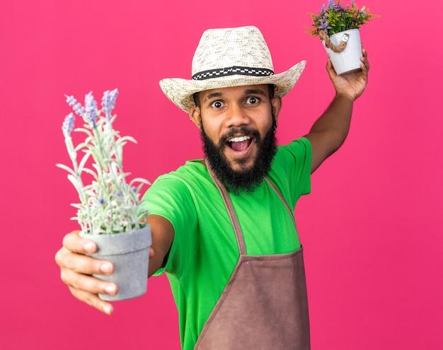 Eccitato giovane giardiniere afro-americano che indossa un cappello da giardinaggio che regge fiori in vaso di fiori sul davanti isolato su parete rosa