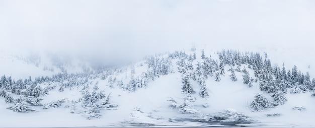 Favoloso panorama 360vr con montagne innevate