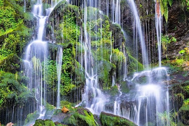 Cascata fahler nella foresta nera, germania