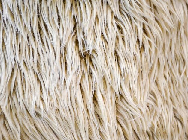 Primo piano beige del tessuto della pelliccia di colore falso o del vello delle pecore della lana strutturato e fondo.