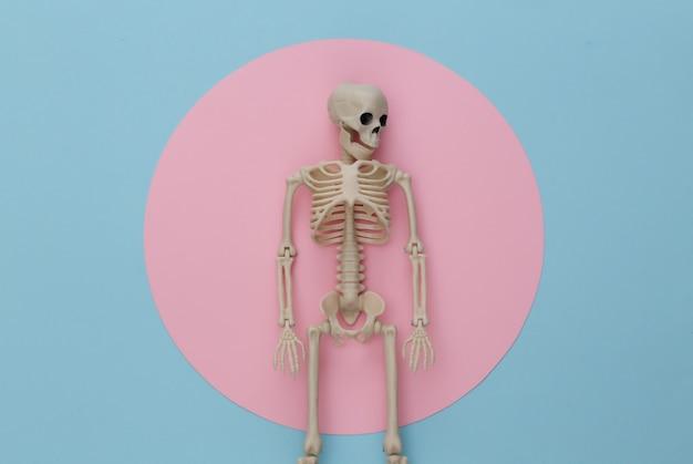 Scheletro falso su pastello blu rosa. decorazione di halloween, tema spaventoso