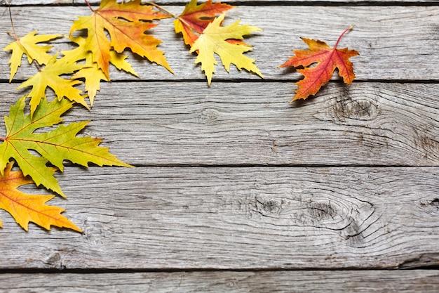 Sfondo di caduta. foglie di acero gialle su vecchio legno stagionato rustico. bordo del fogliame bella stagione autunnale.