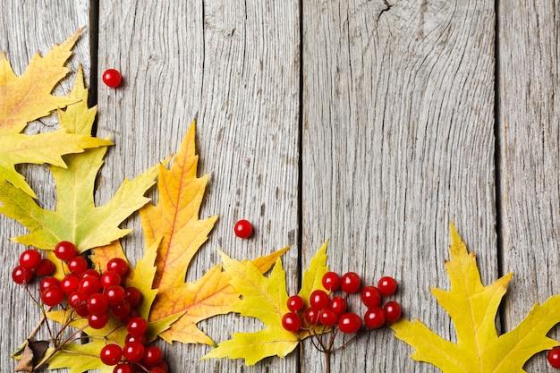 Sfondo di caduta. foglie di acero gialle e composizione di viburno su legno vecchio stagionato rustico. bordo del fogliame bella stagione autunnale.