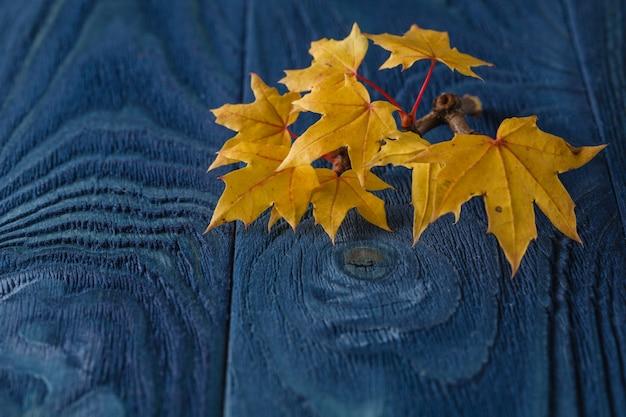 Foglie di autunno su sfondo blu