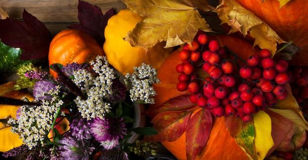 Zucche autunnali, foglie gialle e rosse
