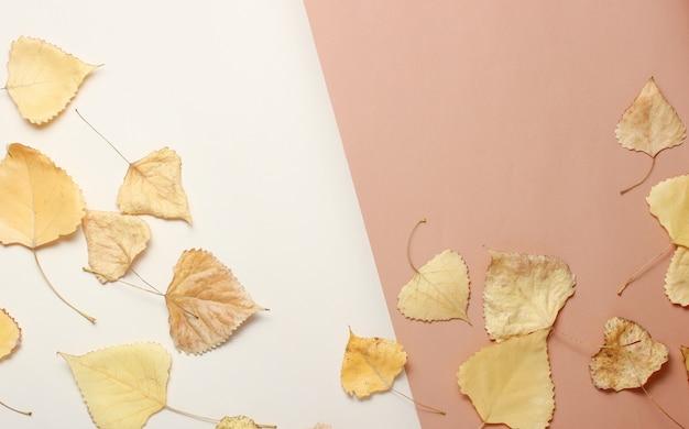 Fogli di autunno caduti su una tabella beige. vista dall'alto. minimalismo. spazio copia creativa