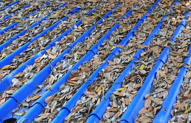 Foglie secche cadute sul tetto delle mattonelle blu.