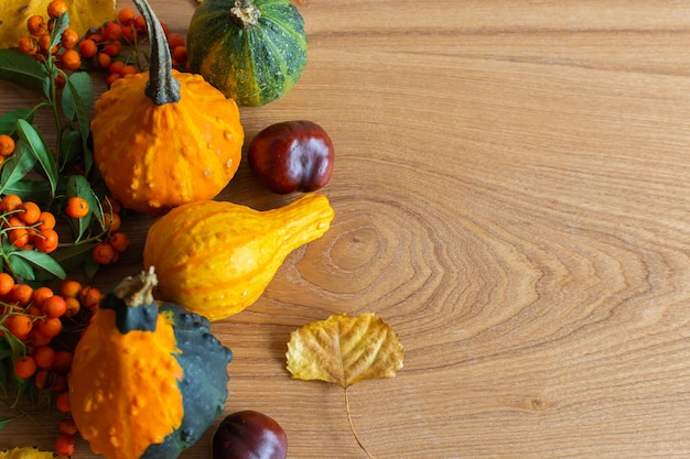 Foglie cadute di alberi e frutti di castagno, zucche decorative e sorbo su fondo di legno, fondo di autunno