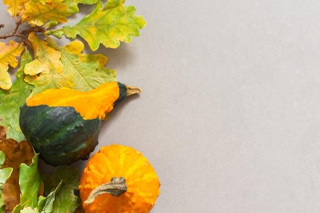 Foglie cadute di alberi e zucche decorative arancioni su uno sfondo grigio, sfondo autunnale