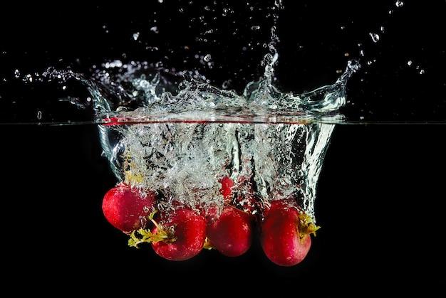 Caduta di ravanelli in acqua, spray per design, congelamento in movimento. acqua splash e verdure